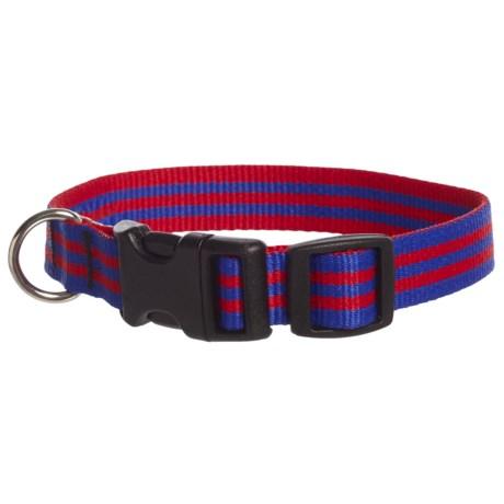 """Bison Designs 3/4"""" Stripe Dog Collar"""