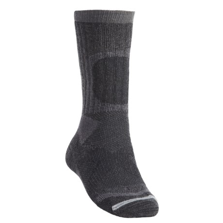 Lorpen Tri-Layer Heavy Trekker Socks - 2-Pack, PrimaLoft®-Merino Wool (For Men)