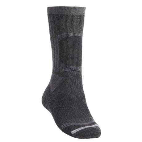 Lorpen Tri-Layer Heavy Trekker Socks - 2-Pack, PrimaLoft®-Merino Wool (For Men)