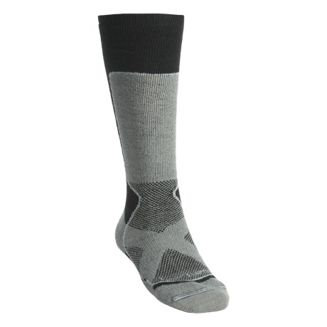 Lorpen Tri-Layer PrimaLoft Ski Socks - 2-Pack, Midweight (For Men and Women)