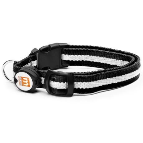 Nitebeams LED Dog Collar - Extra-Large