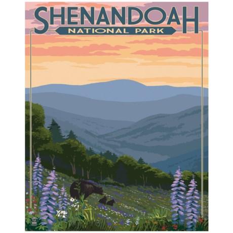 "Portfolio Arts Group Shenandoah National Park Print - 16x20"""