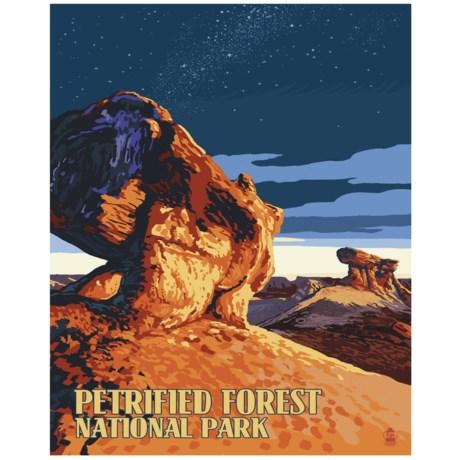 "Portfolio Arts Group Petrified Forest National Park Canvas Print - 16x20"""