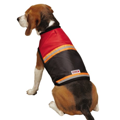 Kong Dog Safety Vest