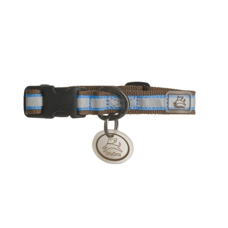 Ollydog Night Life Reflective Dog Collar