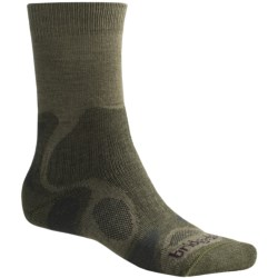 Bridgedale X-Hale Trailblaze Socks - Merino Wool, Crew (For Men)