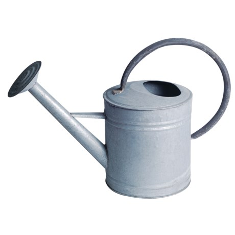 Tierra Garden Oval Aged Metal Watering Can - 1.2 Gallon