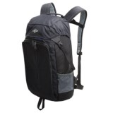 Eagle Creek Quirk Backpack