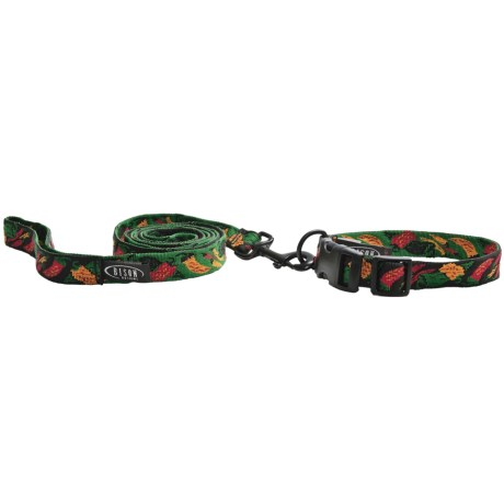Bison Designs Dog Collar and Leash - Nylon
