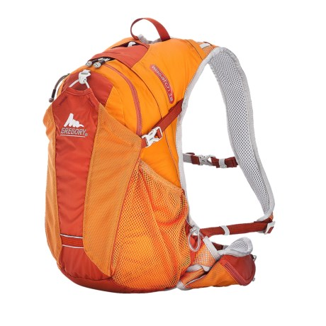 Gregory Wasatch 12 Backpack