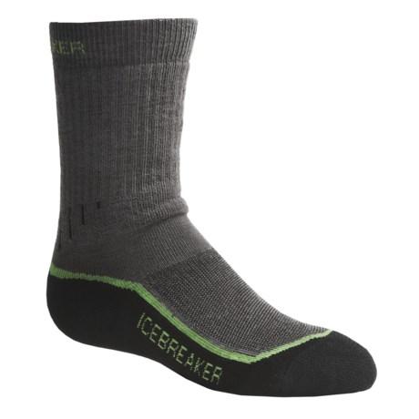 Icebreaker Hike Medium Cushion Socks - Merino Wool, Crew (For Kids)