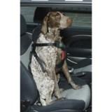 ASPCA Safety Travel Dog Harness - Medium