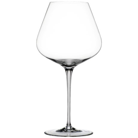 Spiegelau Hybrid Burgundy Glasses - Set of 2
