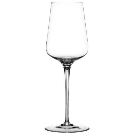 Spiegelau Hybrid White Wine Glasses - Set of 2