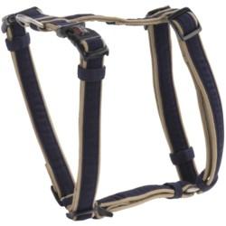 "Dog Gone Smart Wear Dog Harness - 3/4"""
