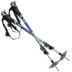 Black Diamond Equipment Expedition Adjustable Ski Poles - Pair