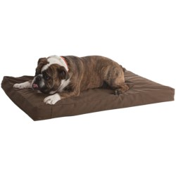"Kimlor Memory-Foam Dog Bed - 24x36"""