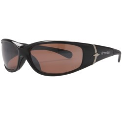 HiDefSpex Dino Sunglasses - Polarized