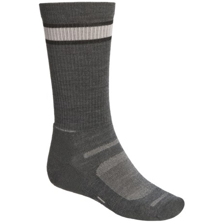 Point6 Sport Socks - Merino Wool (For Men and Women)