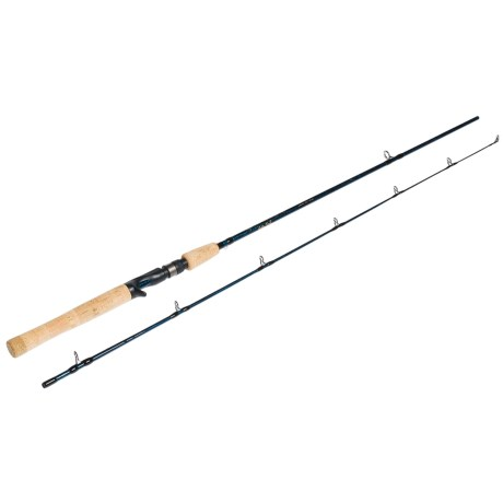 Temple Fork Outfitters TiCr² Casting Rod - 2-Piece, 6'