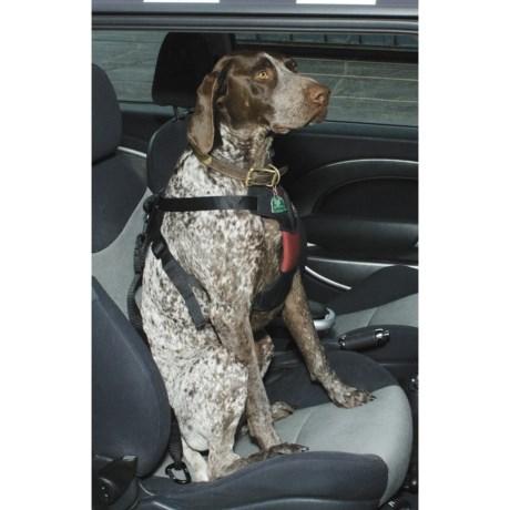 ASPCA Safety Travel Dog Harness - Large