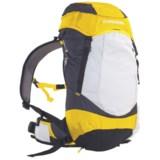 Wenger Onex 20L Backpack