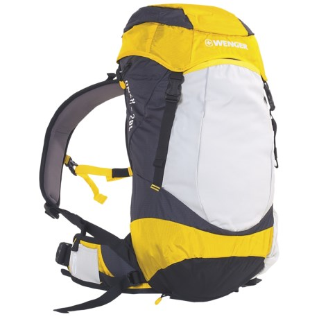 Wenger Onex 20L Backpack