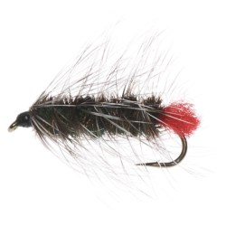 Dream Cast Wooly Worm Nymph Fly - Dozen
