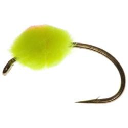Dream Cast Roe Bug Egg Fly - Dozen