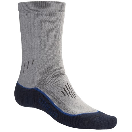 Icebreaker Hike Trek Socks - Merino Wool, Crew (For Men)