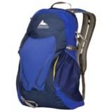 Gregory Fury 16 Backpack