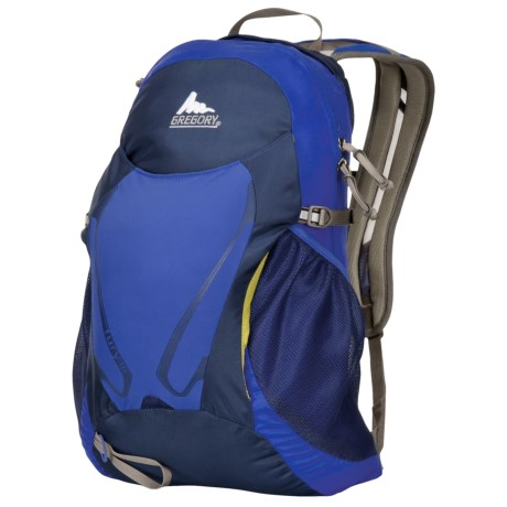 Gregory Fury 16 Backpack