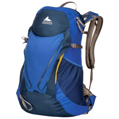 Gregory Fury 24 Daypack