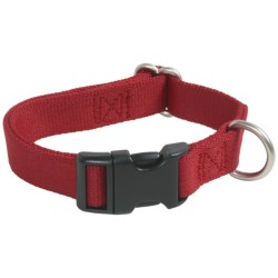 Premier Pet Quick-Snap Eco Dog Collar - Large, Recycled Materials