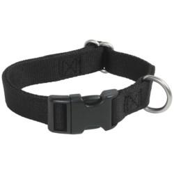 Premier Pet Quick-Snap Eco Dog Collar - Medium, Recycled Materials