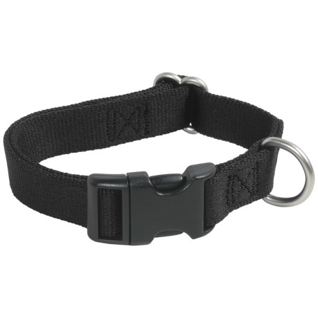 Premier Pet Quick-Snap Eco Dog Collar - Medium, Recycled Materials