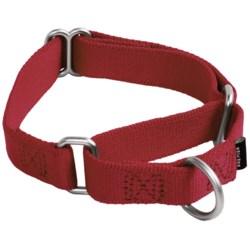 Premier Pet Premier Eco Dog Collar - Small