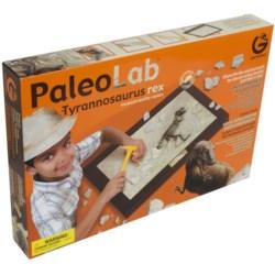 Trilobite Dig & Discover Fossil Kit