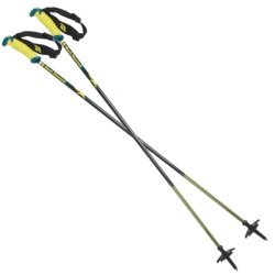 Black Diamond Equipment Fixed Length Carbon Alpine Ski Poles - 115-130cm, Pair