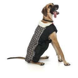 Ezydog Mission Coat - 2XL