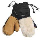 Grandoe Makalu Gore-Tex® Mittens - Waterproof, Insulated (For Men)