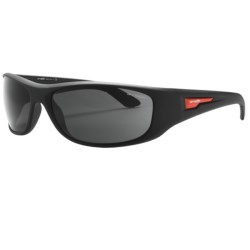 Arnette Freezer Sunglasses