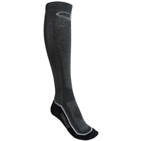 Icebreaker Ski Lite Socks - Merino Wool, Over-the-Calf, 2-Pack (For Women)
