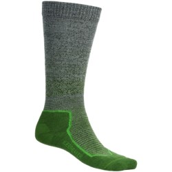 Icebreaker Ultralite Ski Socks - Merino Wool, Over-the-Calf (For Men)