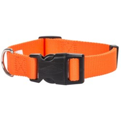 Team Realtree Blaze Quick-Snap Dog Collar