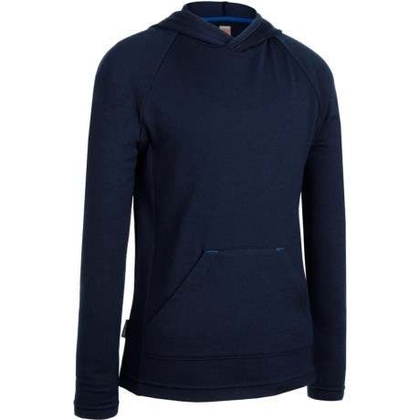 Icebreaker Bodyfit 260 Adventure Hoodie Sweatshirt - UPF 50+, Merino Wool (For Kids)