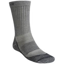 Icebreaker Outdoor Lite Crew Socks- Merino Wool, 2-Pack, Crew (For Men)