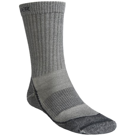 Icebreaker Outdoor Lite Crew Socks- Merino Wool, 2-Pack, Crew (For Men)