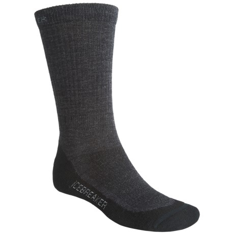 Icebreaker Hike Lite Socks- Merino Wool, 2-Pack, Crew (For Men)