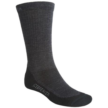 Icebreaker Hike Lite Socks- Merino Wool, 2-Pack, Crew (For Men)